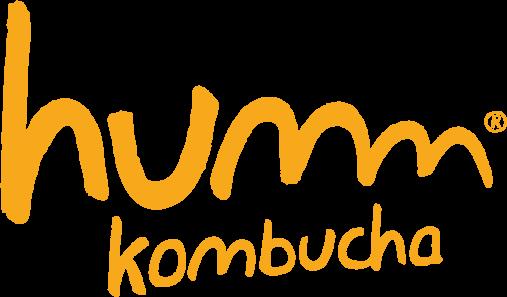Humm Kombucha Orange for Web