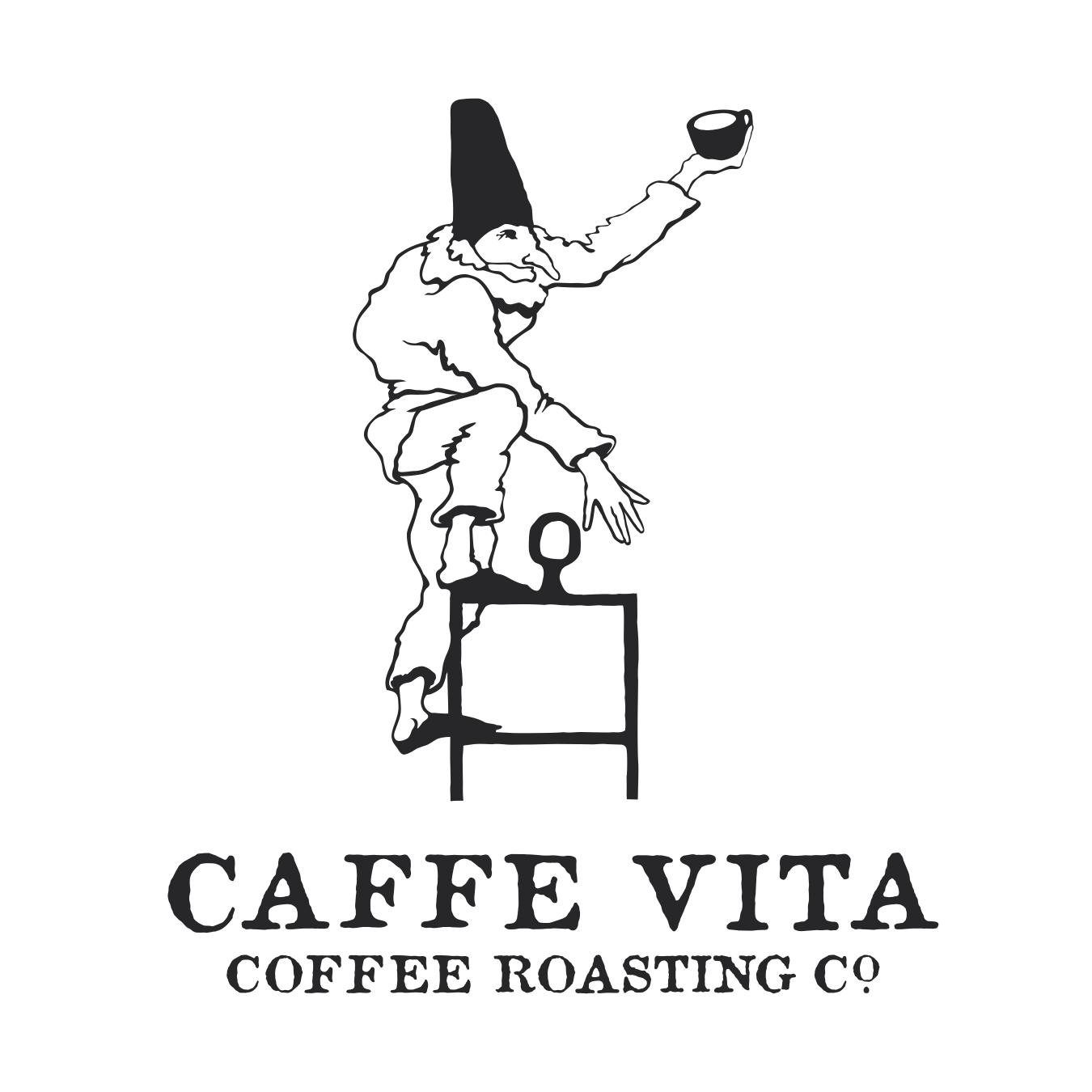 VITA_logo copy